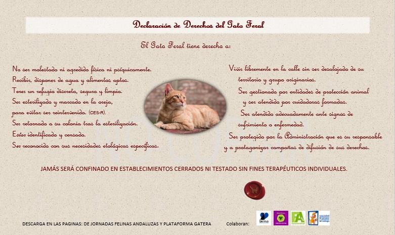 Decálogo-Declaración Derechos Gato Feral.web
