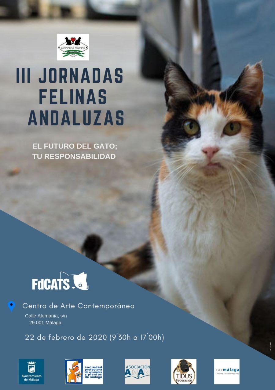 iii jornadas felinas andaluzas